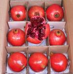 Pomegranate Red India - Box