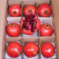 Pomegranate Red India - Box