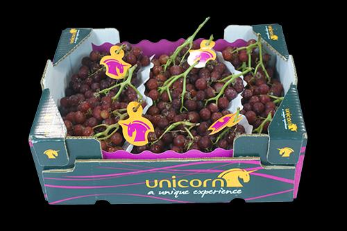 Grapes Red seedless - Box