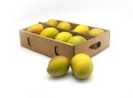 Mango Alfonsa - Box