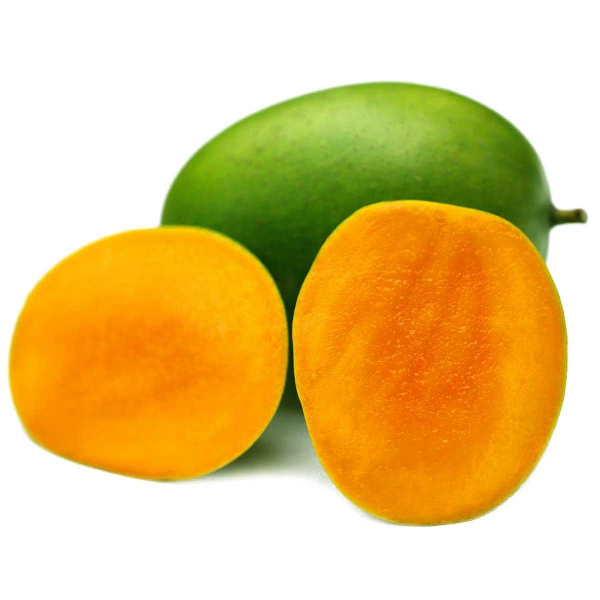Mango Egypt