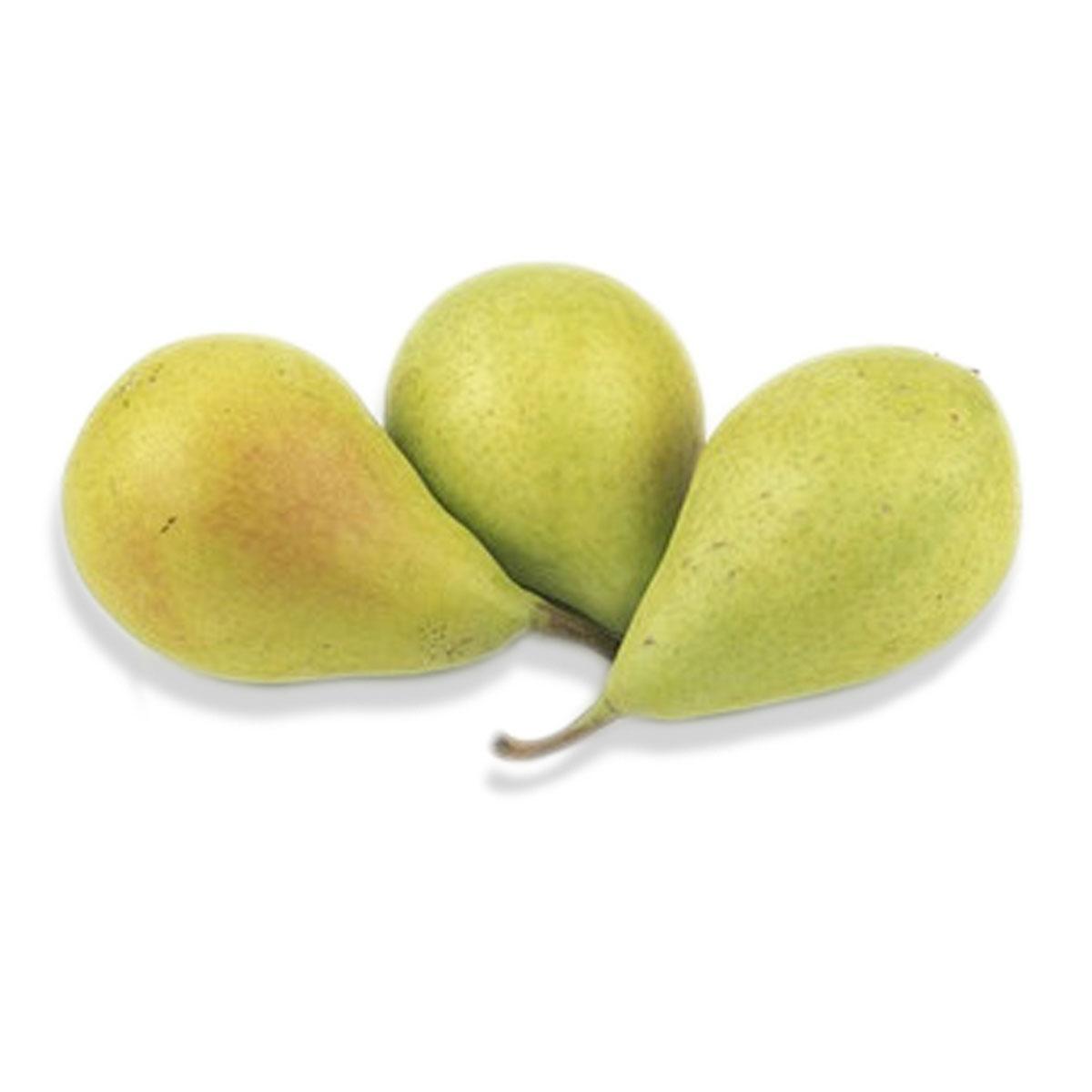 Pear Coscia