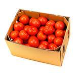 Tomato UAE - Box