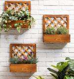 Barris Wall Hanging Wooden Plant Stand- 40 cm