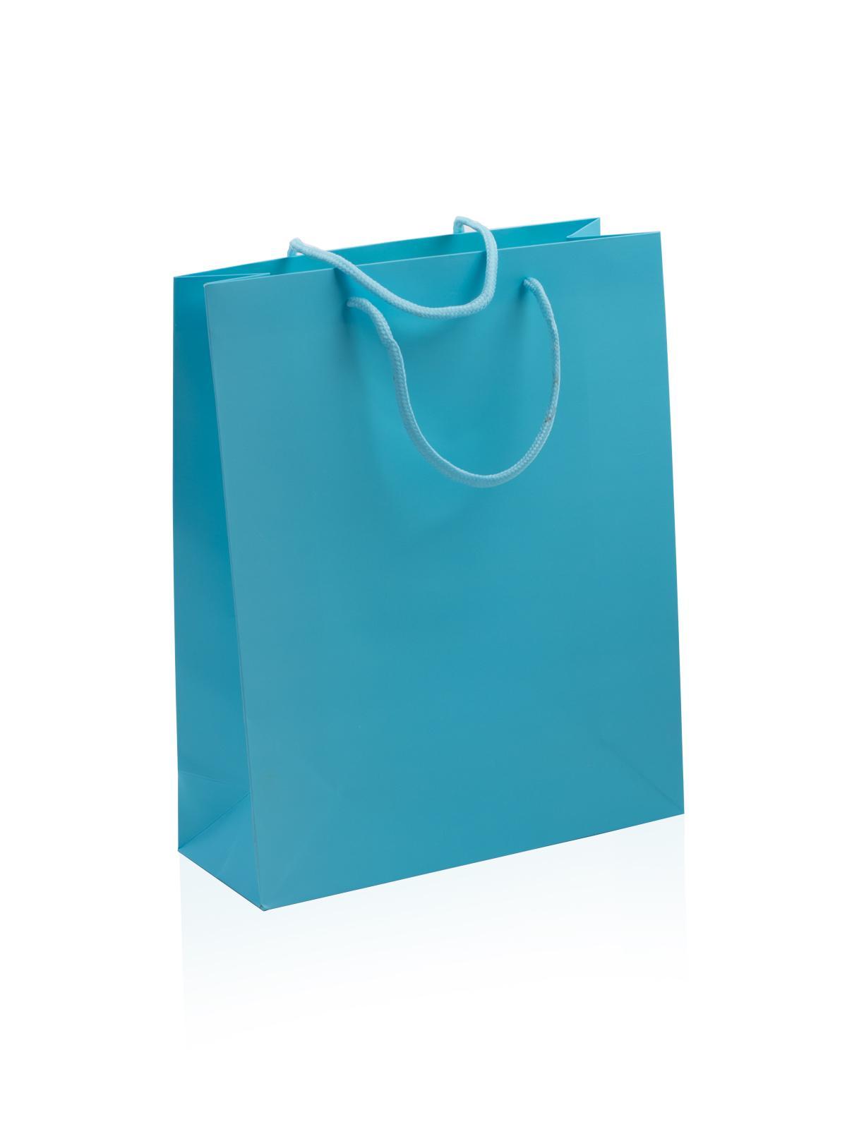 Paper Bag Medium Sky Blue