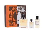 Hermes Terre D`Hermes For Men Eau De Toilette 100ML Set