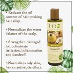 EO Laboratorie Organic balancing shampoo for oily hair deep cleansing & long lasting freshness