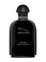 Jaguar For Men Gold In Black for Men Eau De Toilette 100ML