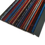 Out Line Chameleon Doormat