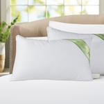 Aloevera White Pillow