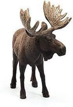 Mojo European Elk / Moose New Colour 2017