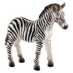 Mojo Zebra Foal