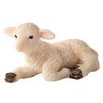 Mojo Lamb Laying Down