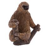 Mojo Two Toed Sloth