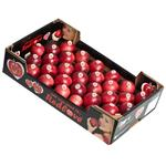 Apple Royal Gala - Box