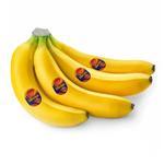 Banana Sebastiano