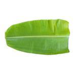 Banana Leaf India