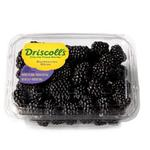 Blackberries Driscoll's