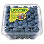 Blueberries Driscoll's