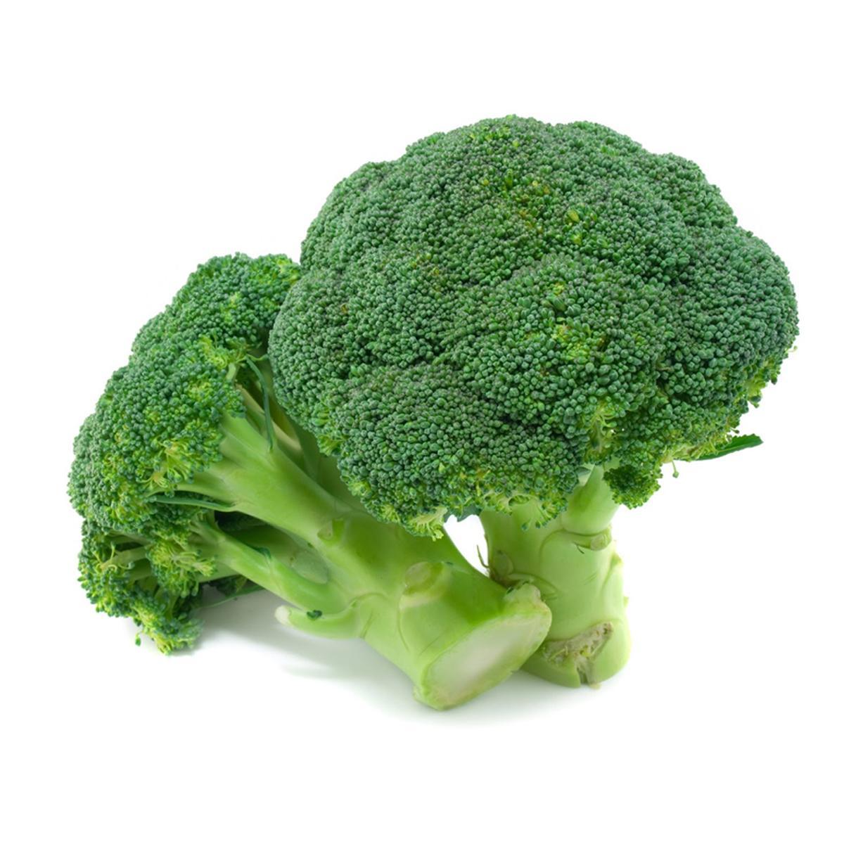 Broccoli Holland