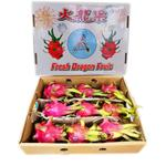 Dragon - Box