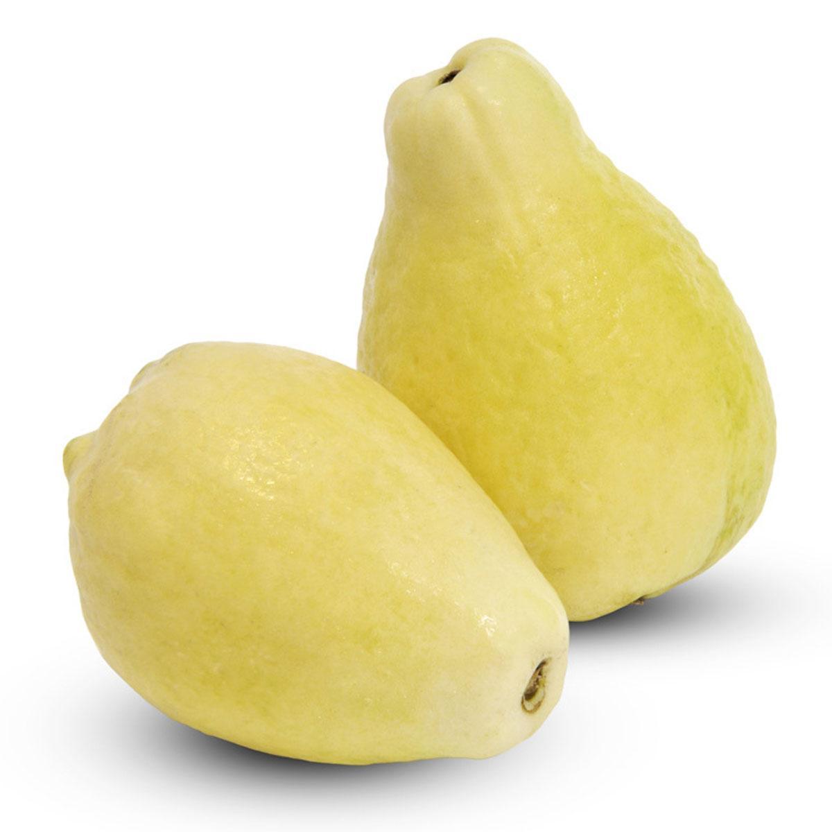 Guava Egypt