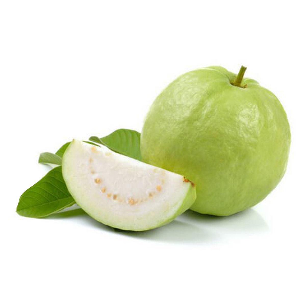 Guava Pakistan