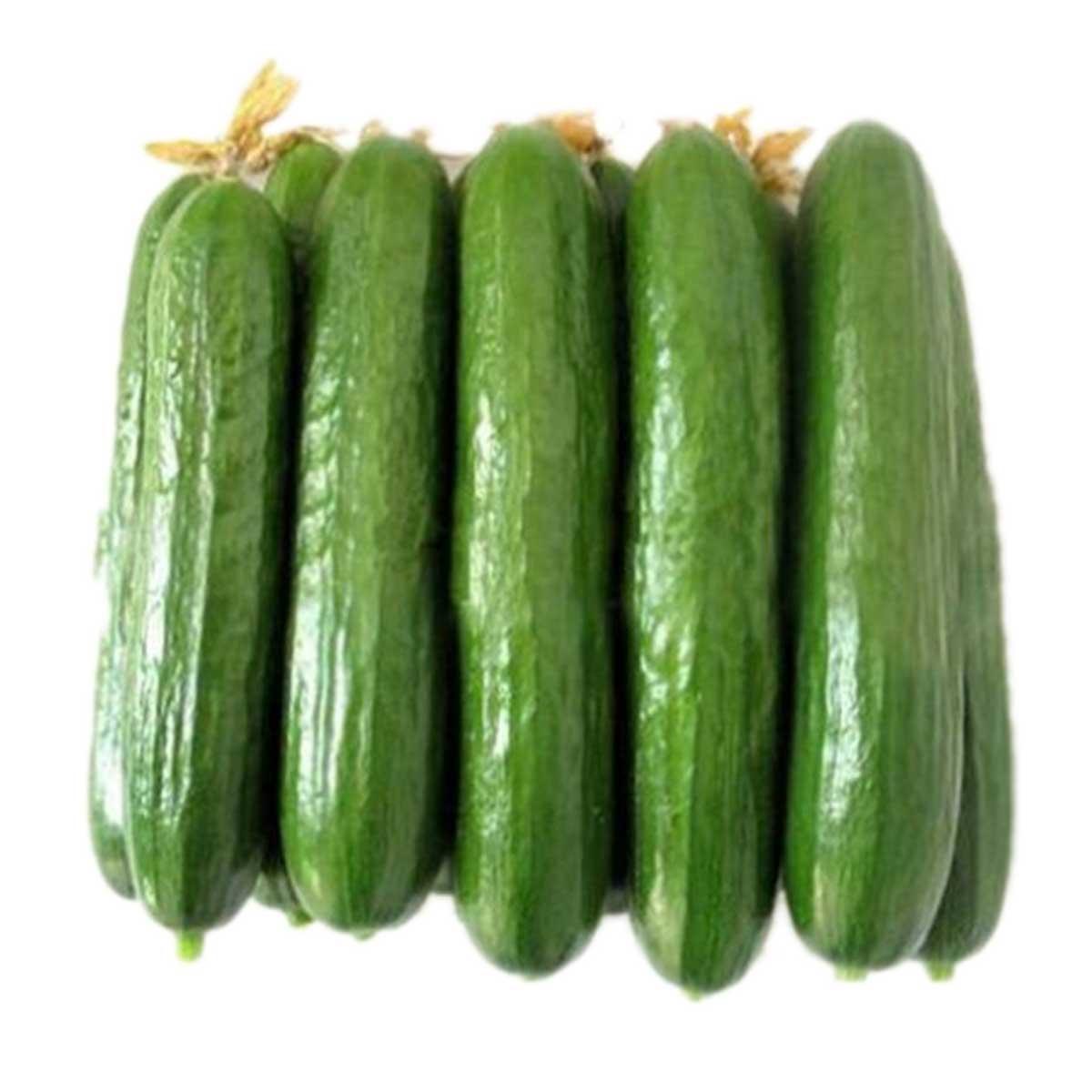 Cucumber Small