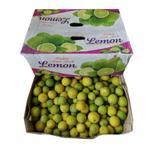 Lemon Small India - Box