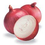 Onion Red Turkey