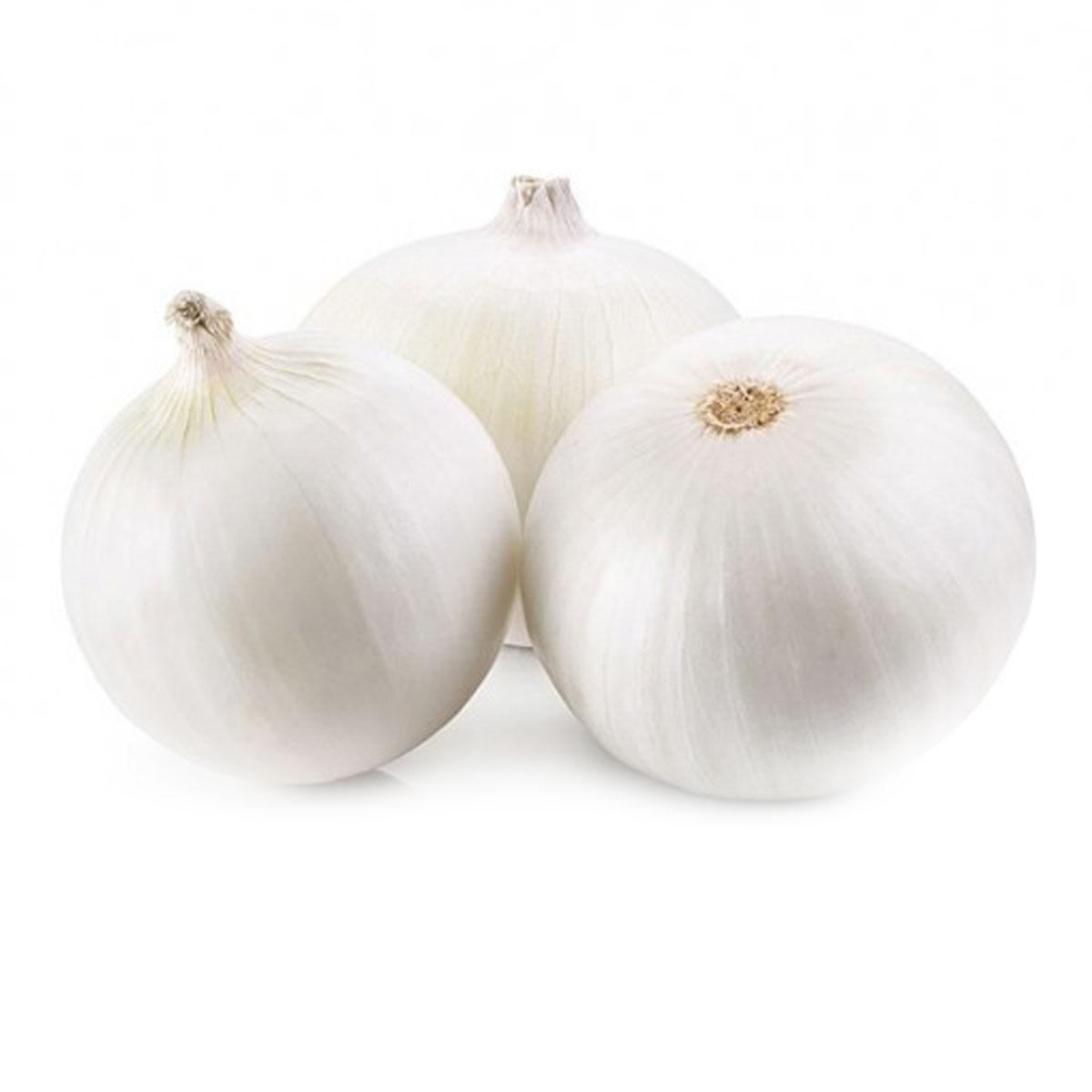 Onion White Spain