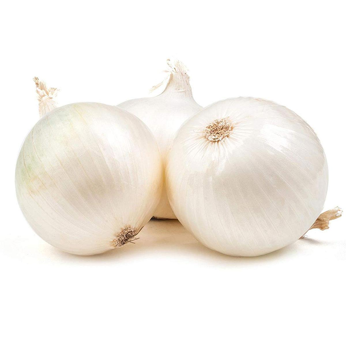 Onion White usa