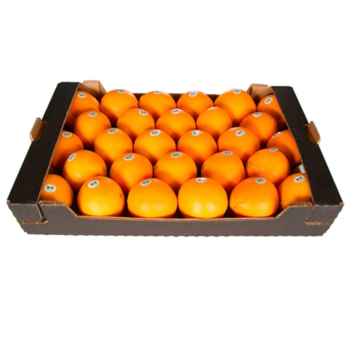 Orange Valencia Egypt - Box