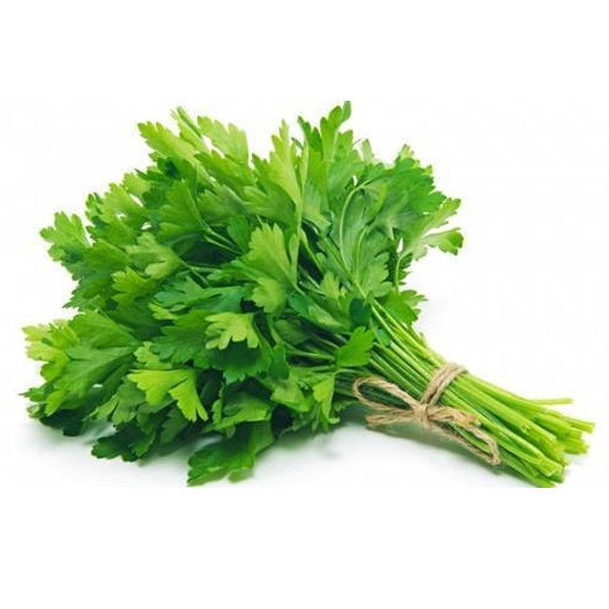 Parsley (Bagdunas)