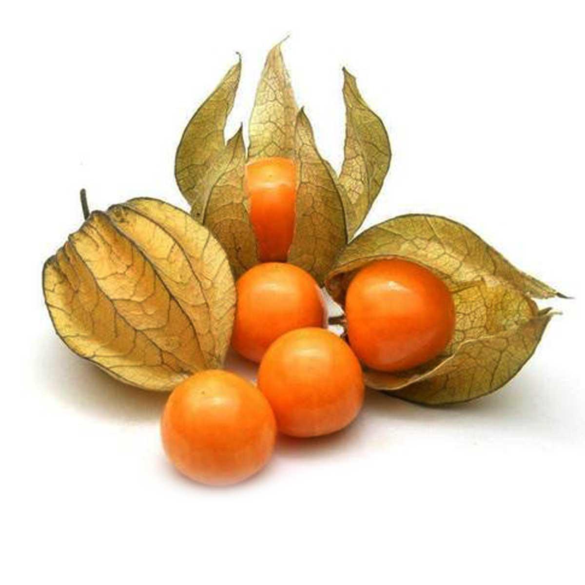 Gooseberries Physalis