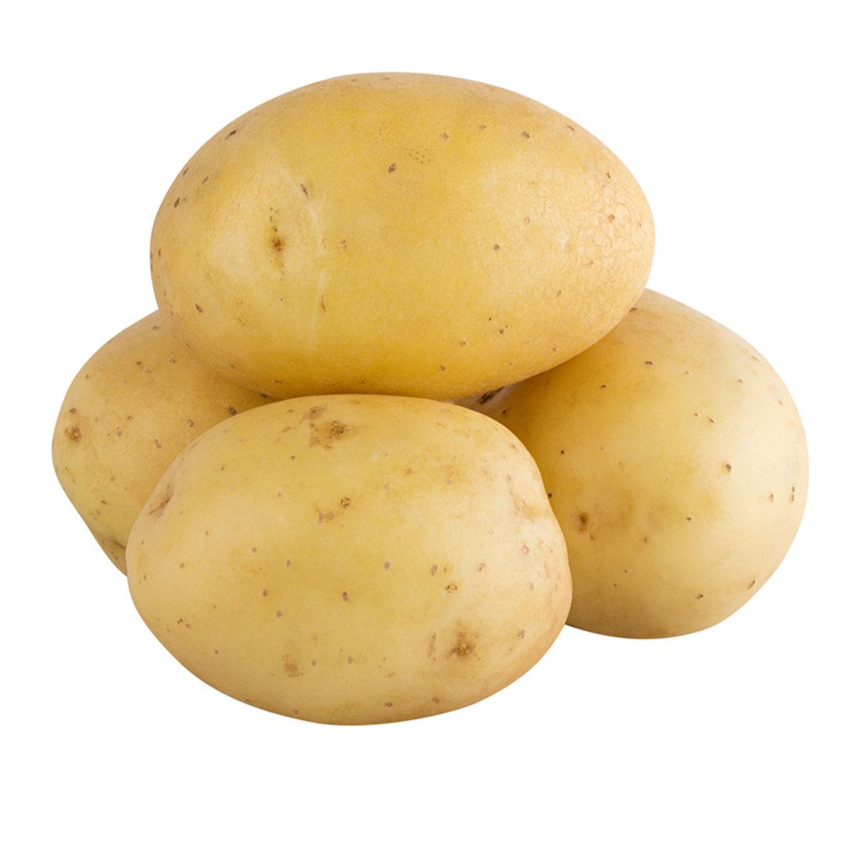 Potato Egypt