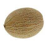 Sweet Melon Jordan