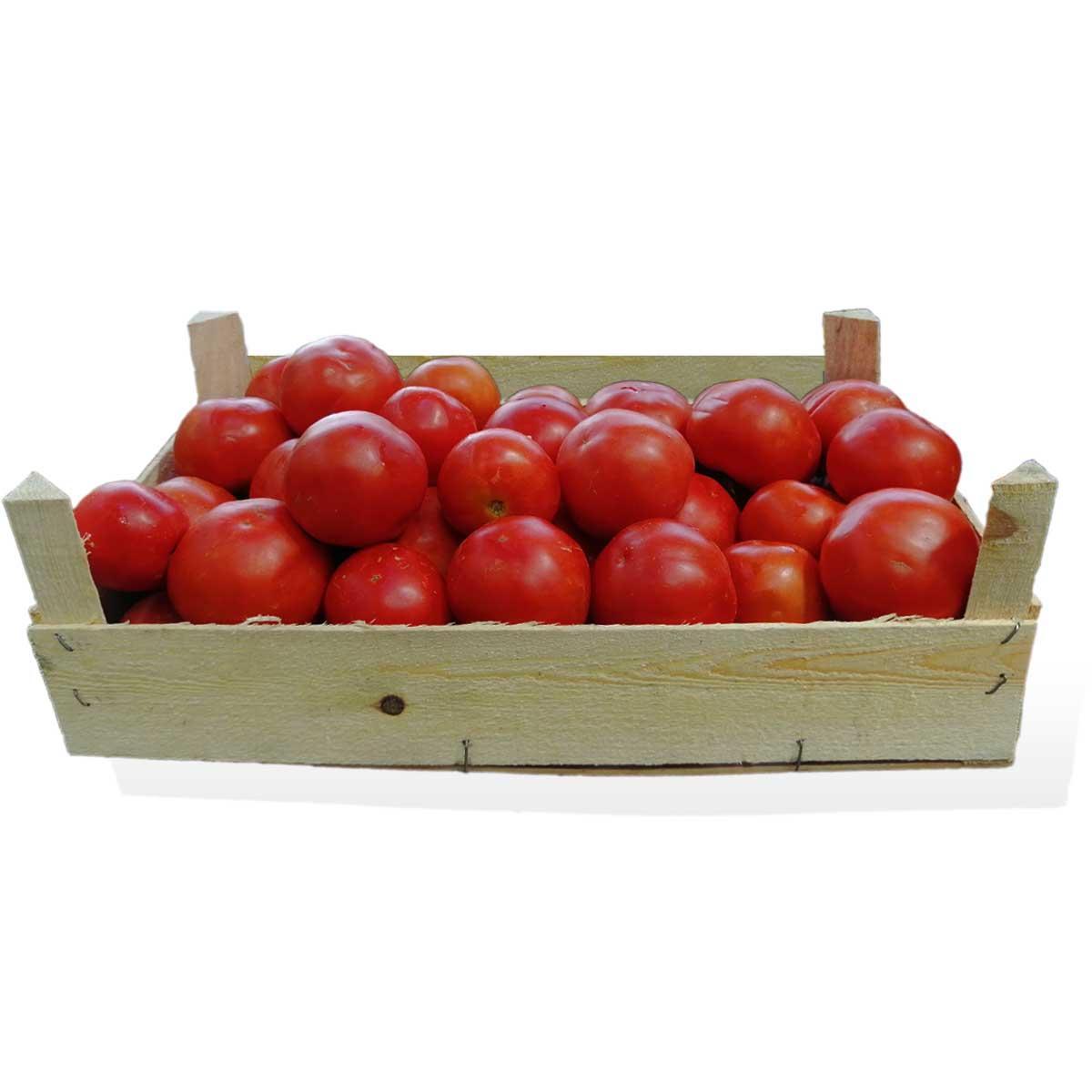 Tomato Jordan - Box