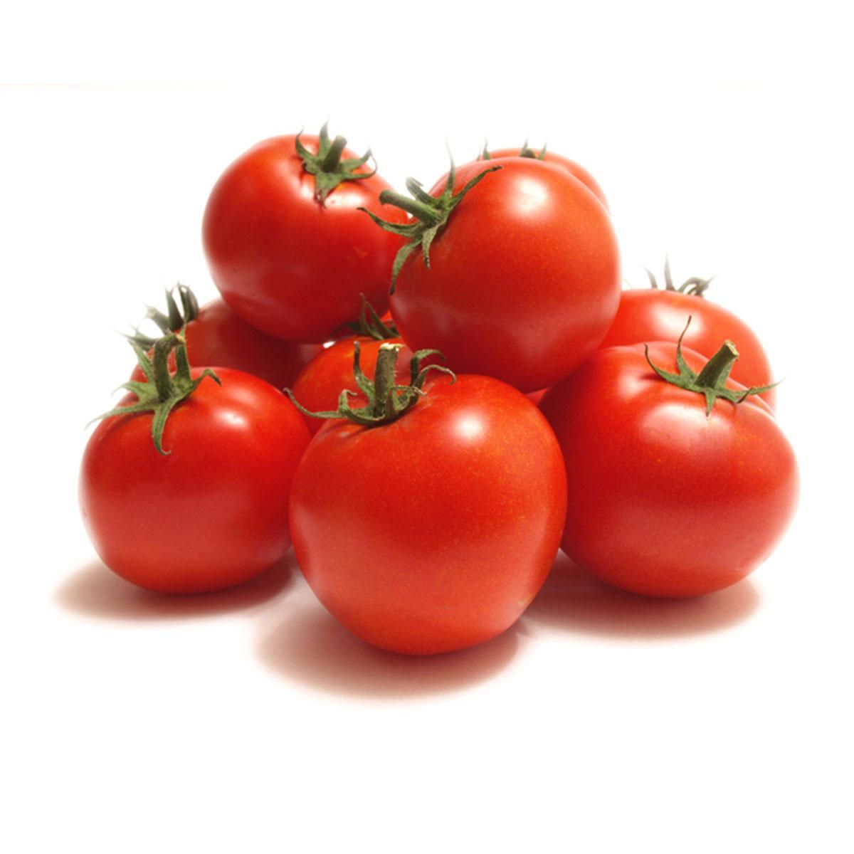 Tomato Jordan