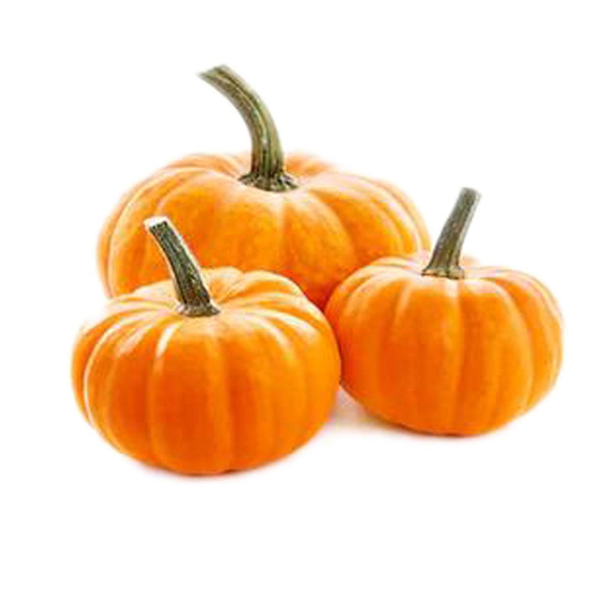 Red Pumpkin Fancy
