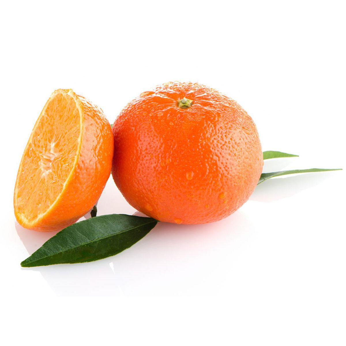 Mandarin Turkey