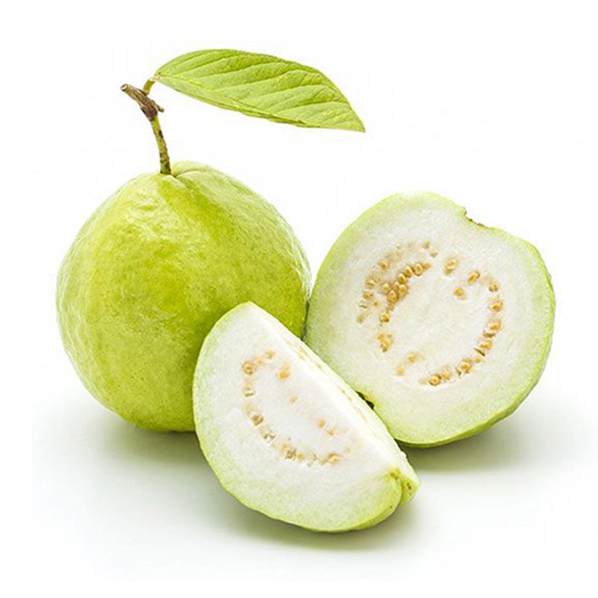 Guava Malaysia