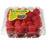 Raspberries USA