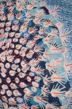 Cacti Printed Scarf
