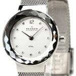 Skagen Classic  Silver Tone Mesh Strap Analog Watch - 456SSS