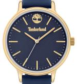 Timberland Chesley Blue Silicone Strap Analog Watch - T TBL15956MYG-03P