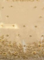 Pankhudii Beige Embroidered Semi-Stitched Lehenga Set (76331)