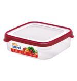 Airtight Food Keeper (1600 ML)