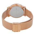 DKNY Women's SoHo Mesh Bracelet Watch NY2622