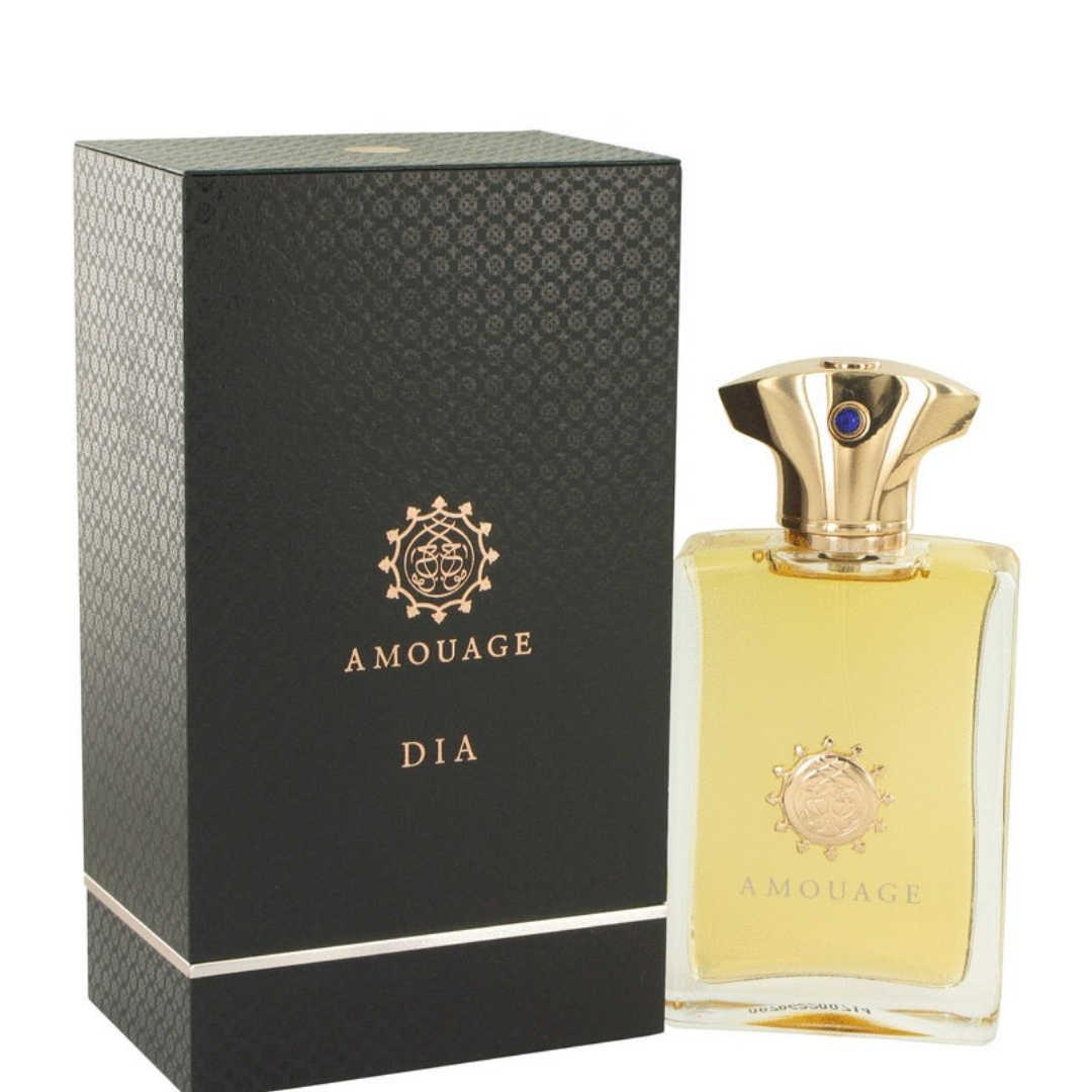 Amouage Dia For Men Eau De Parfum 100ML